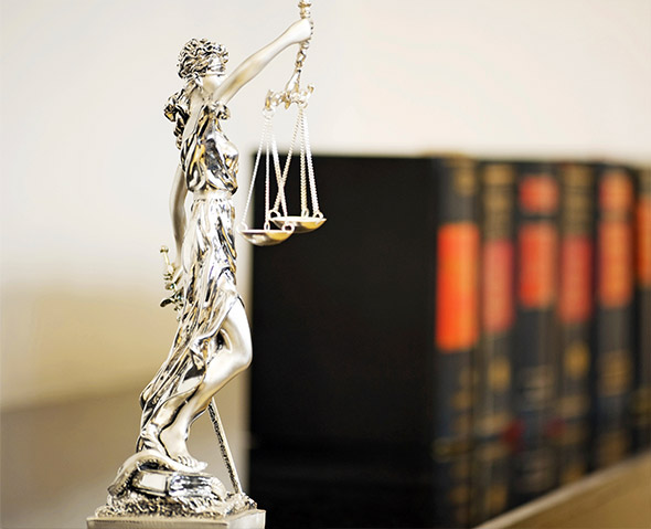 AREAS OF EXPERTISE - Expertise in more than 50 fields of law.